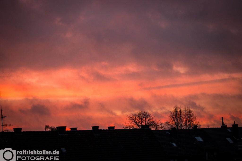 Morgenrot über den Dächern von Münster