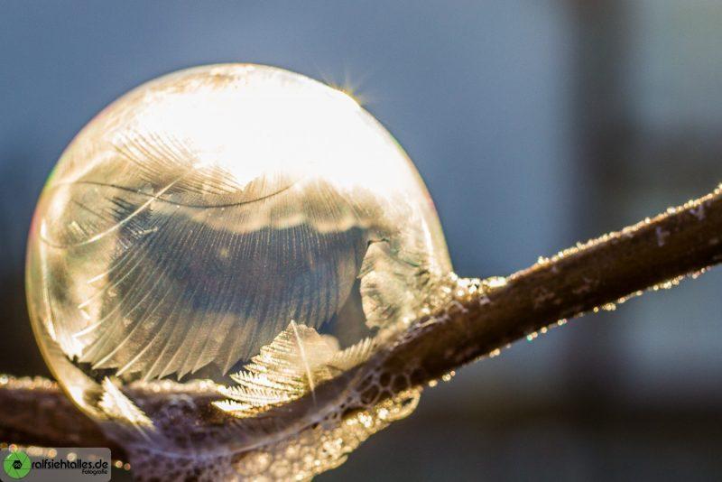 gefrierende Seifenblasen